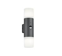 Настенный уличный светильник TRIO HOOSIC 222260242