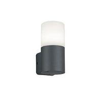 Настенный уличный светильник TRIO HOOSIC 224060142