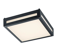 Потолочный уличный светильник TRIO NEWA 620060142