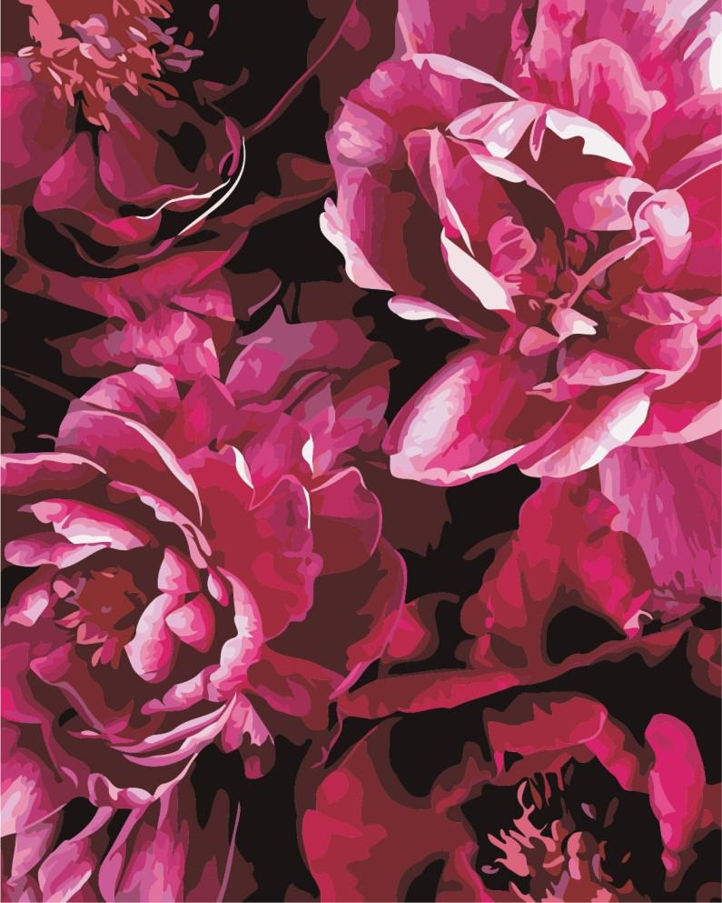 AS0839 Набор для рисования по номерам Роскошные цветы, В картонной коробке