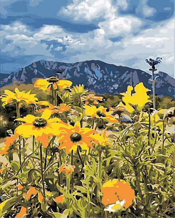 AS0865 Набор для рисования по номерам Весна в горах, В картонной коробке, фото 2