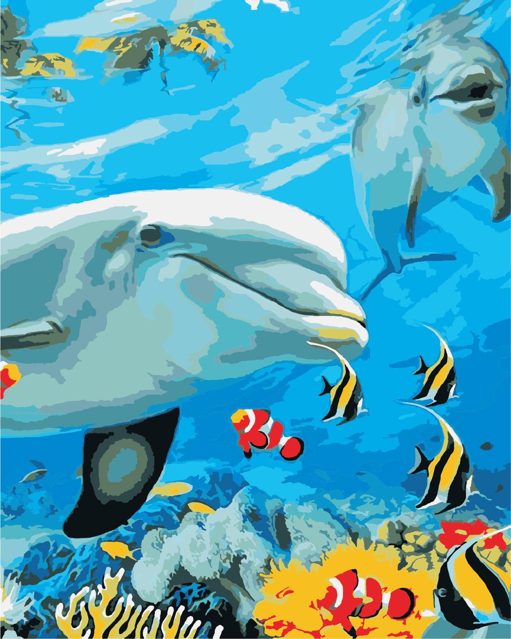 AS0868 Набор для рисования по номерам Улыбка дельфина, В картонной коробке