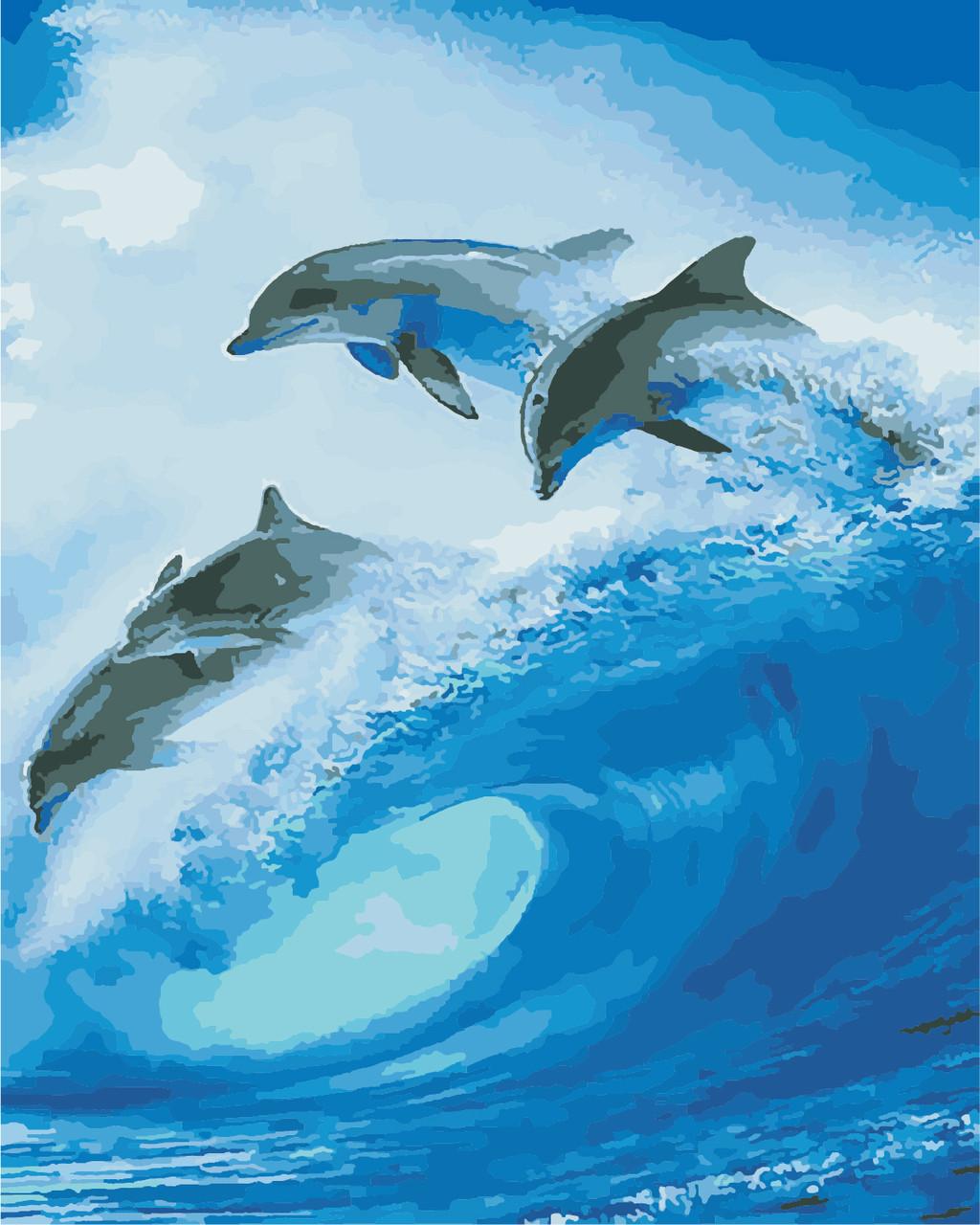 AS0871 Набор для рисования по номерам Стая дельфинов, В картонной коробке