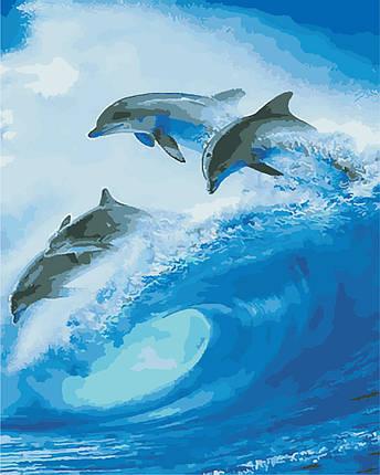 AS0871 Набор для рисования по номерам Стая дельфинов, В картонной коробке, фото 2
