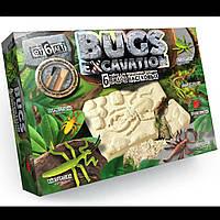 Раскопки жуков