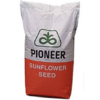 Пионер (pioneer)