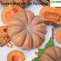 Тыква МУСКАТ ДЕ ПРОВАНС (500 гр) CLAUSE