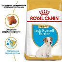 Джек-рассел-тер'єр Puppy до 10 місяців 3 кг, фото 2