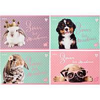 Альбом дя рисования Kite Studio Pets 12л скоба (SP20-241)