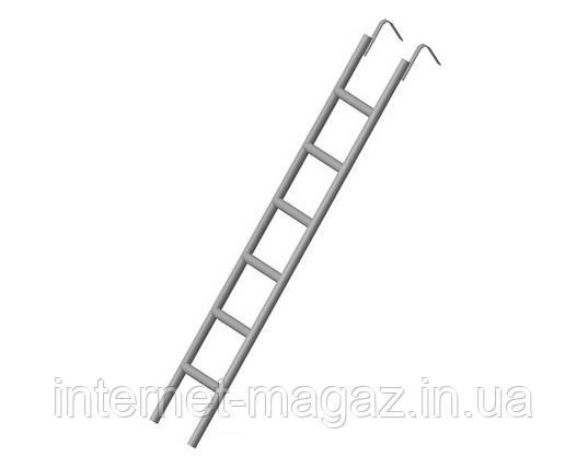 Лестница подъема для ригельных лесов, фото 2
