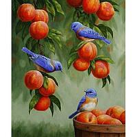 "Картина по номерам. Животные ""Дрозди и персики"" 30х40см KHO2429"