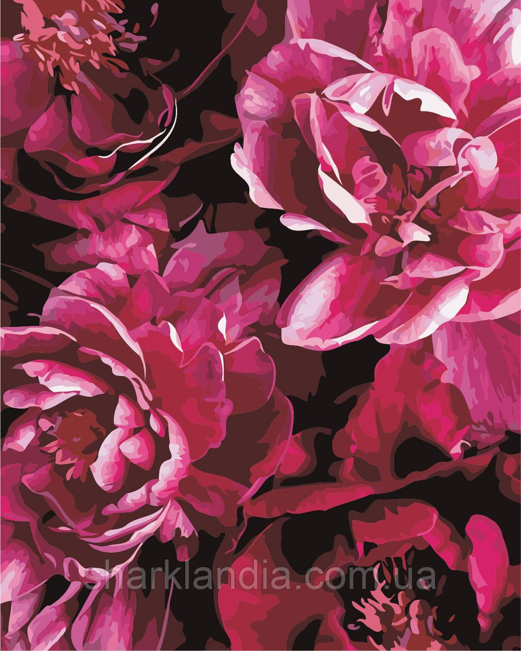 """Картина по номерам """"Роскошные цветы"""" 40*50см"""