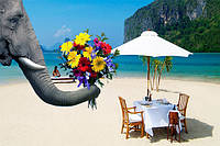 Туры в марте на Шри-Ланку – это Ваше путешествие в долгожданное лето