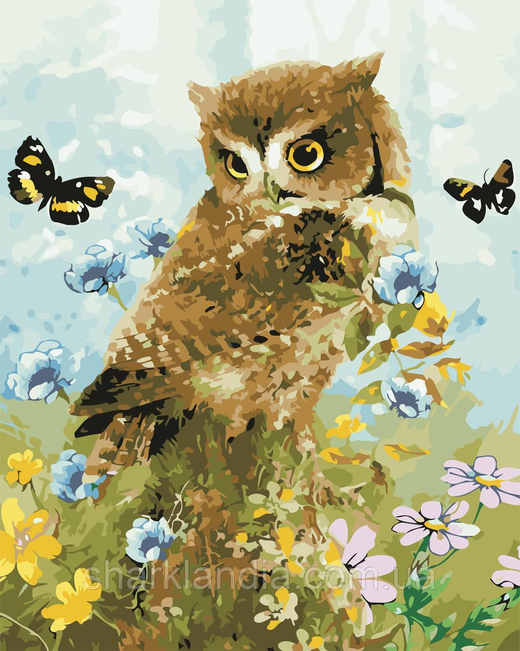 "Картина за номерами ""Совеня і метелики"" 40*50см"