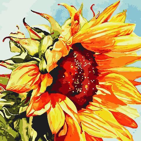 Картина малювання за номерами ArtStory Соняшник AS0811 40х40 см Квіти, букети, натюрморти набір для розпису