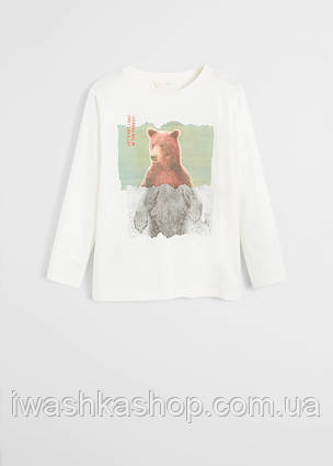 Белый лонгслив, реглан с медведем на мальчика 10 лет, р. 140, Mango