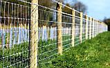 Сетка лесная шарнирная ЗАГРАДА ФЕРМЕР 150/15/15 высота 1.5м длина 50м, фото 2