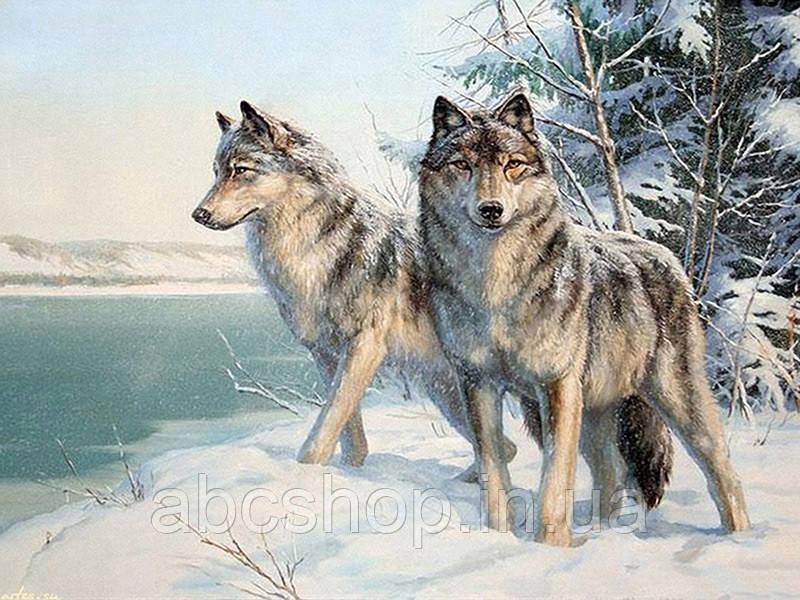 Картина алмазная вышивка Волки 30*40 стразами