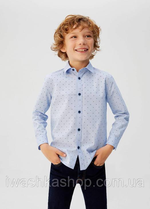 Брендовая голубая рубашка в горох на мальчика 9 лет, 134 р., Mango