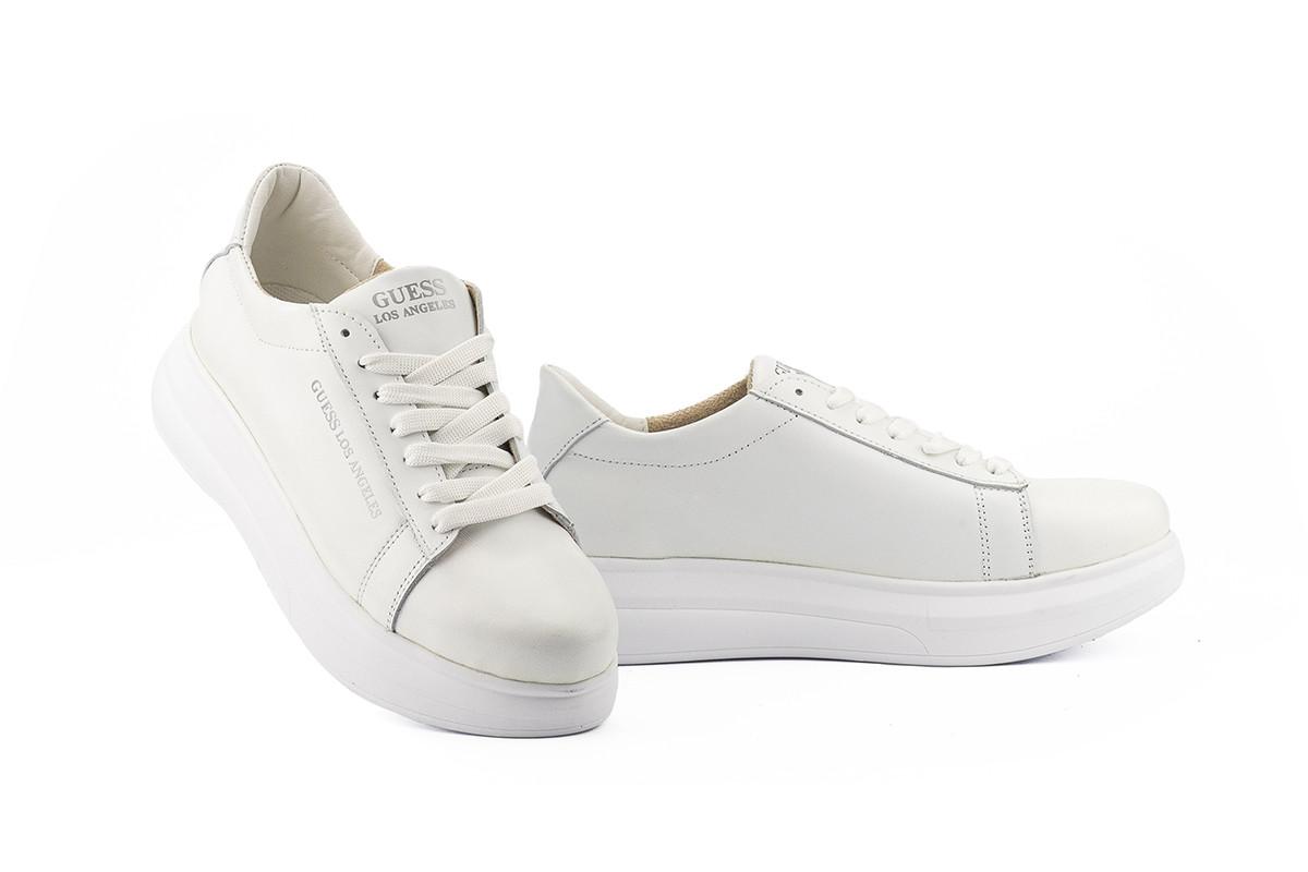 Женские кроссовки кожаные весна/осень белые Lions Гас Los Angelos