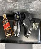 Мужские туфли кожаные весна/осень черные Vivaro 611 (Oxford), фото 7
