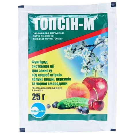 Фунгіцид Топсін-М з.п. (25 гр), Summit Agro, фото 2
