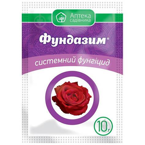 Фунгіцид Фундазим з.п. (10 гр), Укравіт, фото 2