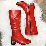 Сапоги красные на невысоком каблуке, декорированы молнией, фото 2