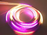 Светодиодная лента SMD гибкая, Неон в Бухте 5м 220V (Микс), фото 2