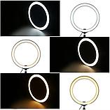 Кольцевая светодиодная Led лампа для блогера селфи фотографа визажиста D 26 см Ring, фото 3
