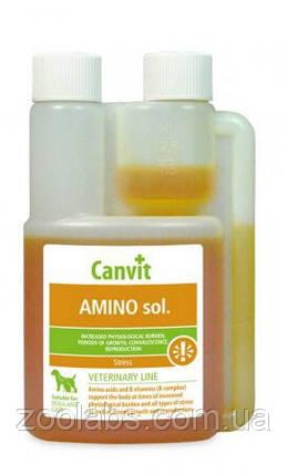 Иммуномодулятор для собак Амино сол   Amino sol Canvit 250 мл, фото 2