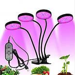 Светодиодная фитолампа для выращивания растений 60 Вт., фото 3