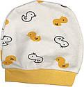 Костюм для новорожденных рост 56 0-2 мес на мальчика девочку комплект детский трикотажный хлопок молочный, фото 4