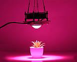 Светодиодная фитолампа для роста растений 300 Вт LED Полный спектр, фото 2