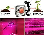 Светодиодная фитолампа для роста растений 300 Вт LED Полный спектр, фото 4