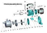 Насос центробежный самовсасывающий 0.45кВт Hmax 38м Qmax 40л/мин (нерж) LEO 3.0 (775352), фото 3