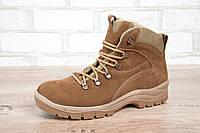 Ботинки тактические STIMUL Патриот-1 зима/деми нубук койот, фото 1