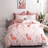 Комплект постельного белья двуспальный 7900 Pretty (ранфорс)