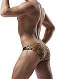 Леопардовые плавки с черной вставкой, фото 4