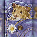 Алмазная вышивка Мышка в кармане 30x40 The Wortex Diamonds (TWD20041), фото 2