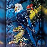 Алмазная вышивка Голубой попугай 30x40 The Wortex Diamonds (TWD20045), фото 2