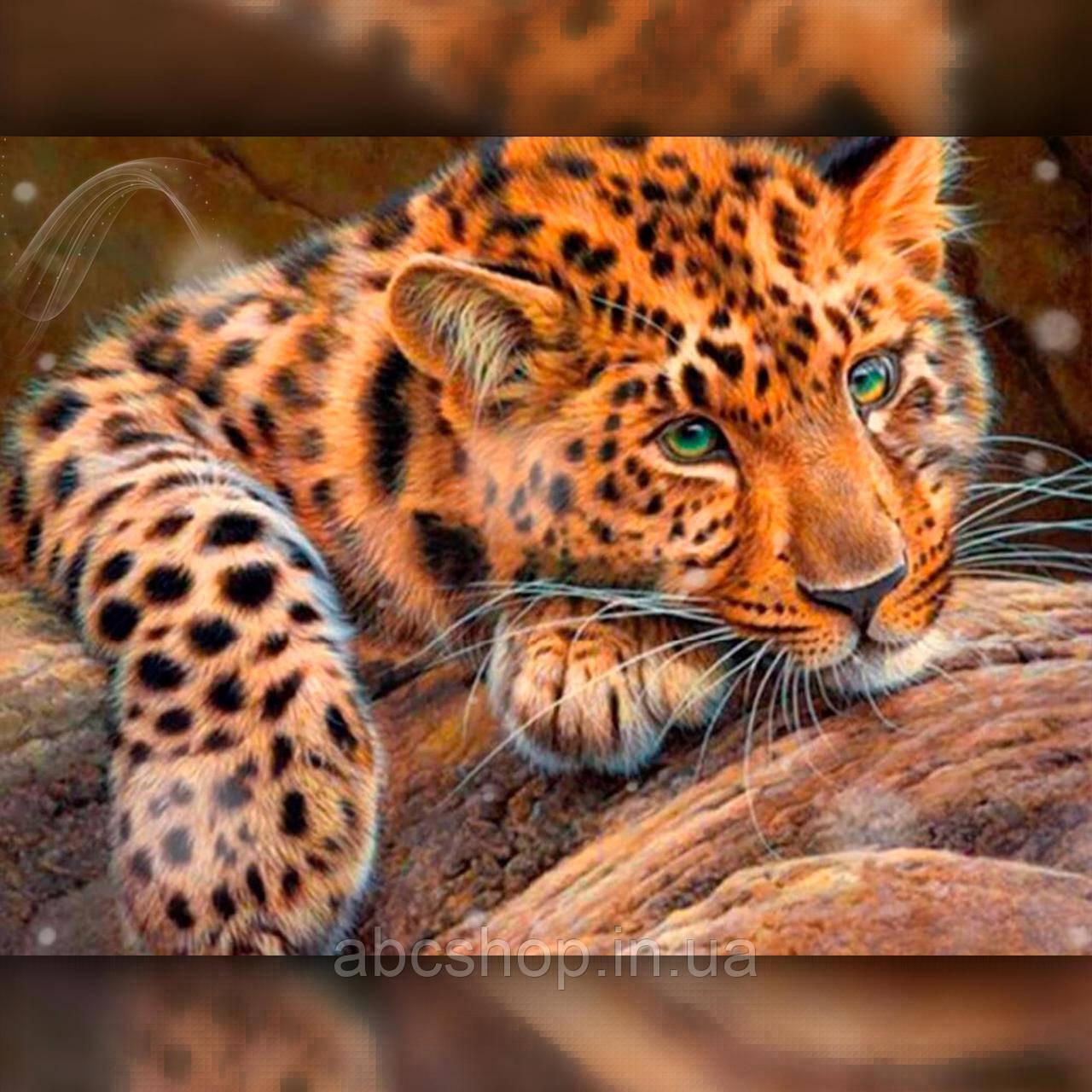 Алмазная вышивка Милый леопард 30x40 The Wortex Diamonds (TWD20055)