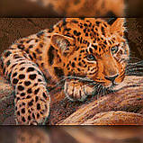 Алмазная вышивка Милый леопард 30x40 The Wortex Diamonds (TWD20055), фото 2