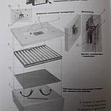 Інкубатор Несучка аналоговий терморегулятор 220\12В з автоматичним переворотом 63 яйця, фото 9