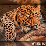 Алмазная вышивка Милый леопард 40x50 The Wortex Diamonds (TWD20055L), фото 2