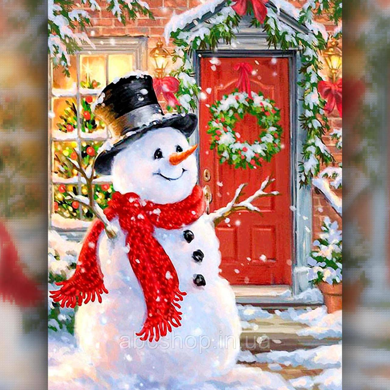 Алмазная вышивка Снеговик у дома 30x40 The Wortex Diamonds (TWD70014)