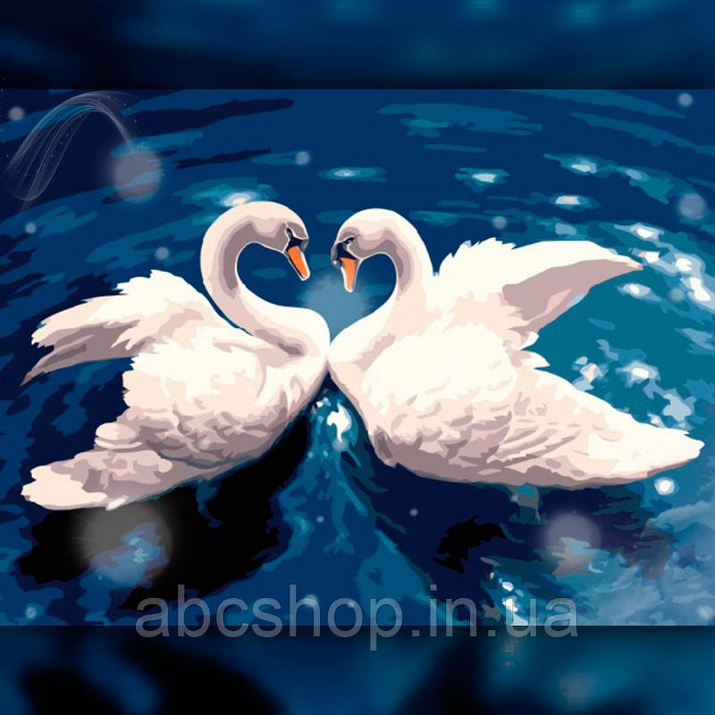 Алмазная вышивка Танец лебедей 30x40 The Wortex Diamonds (TWD20020)