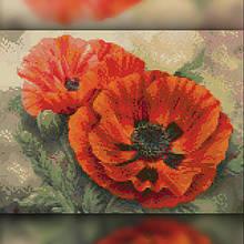 Картины 30х40
