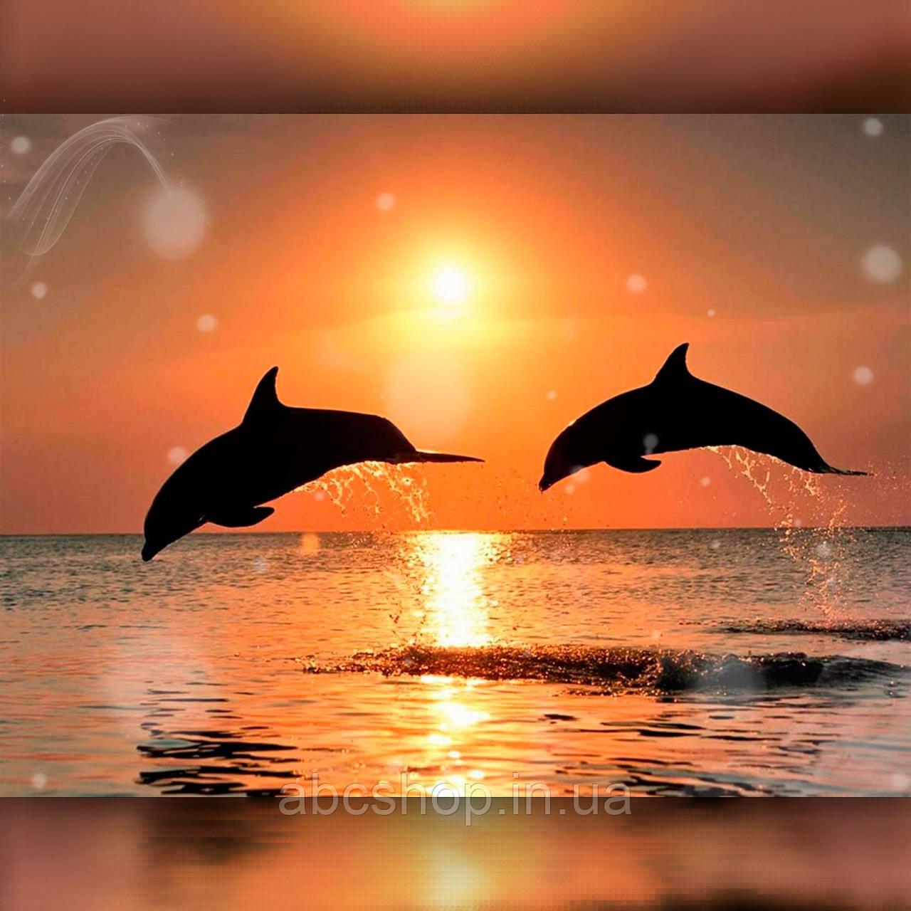 Алмазная вышивка Дельфины на закате 40x50 The Wortex Diamonds (TWD30019L)