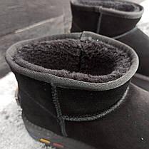 UGG Угги женские укороченные низкие натуралки натуральные черные замша замшевые, фото 2